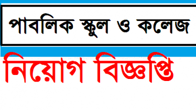 Photo of School and College Job Circular 2019